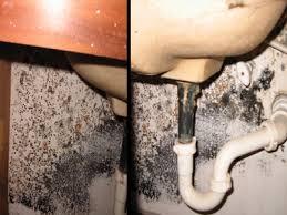 Plumbing Leak Under Sink